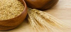wheat_germ1